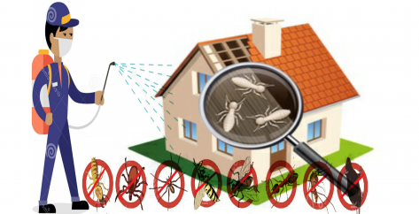 Residentials Termite Control